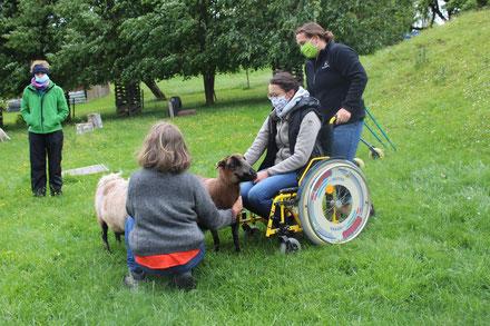 Übungsbeispiele in unserer Fachkraftweiterbildung für Tiergestützte Intervention und Pädagogik