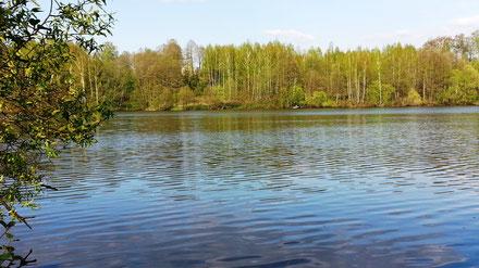 Васинское озеро