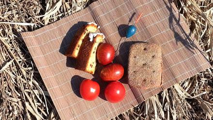 Пасхальный обед в честь Дня космонавтики