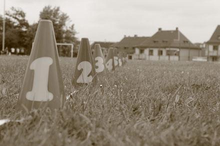 Sportfest der Förderschulen 2013