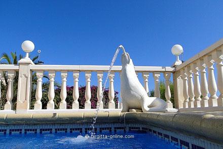 Ferienwohnung Valencia, Seehund am Meerwasser-Pool, Bild vom 13.09.2011