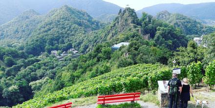 Eine Wanderung mit Weinprobe von Altenahr bis nach Mayschoß wird Sie landschaftlich begeistern