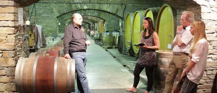 Weinprobe mit geführter Gewölbekellerbesichtigung an der Ahr im Ahrtal