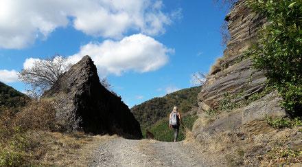 Die Wanderwege im Ahrtal bieten, so wie hier in Mayschoß, eine besonders schöne Natur.