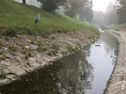 Entlang des Liesingbachs ist ein ruhiger Weg für eine Gehmeditation