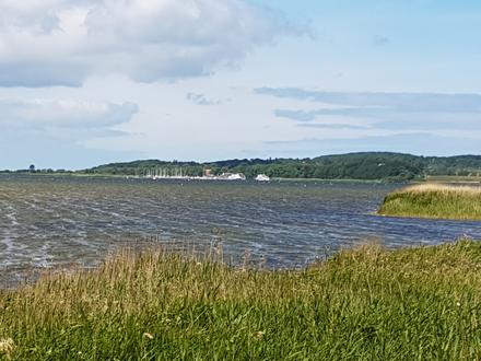 Blick auf den Hafen von Kloster