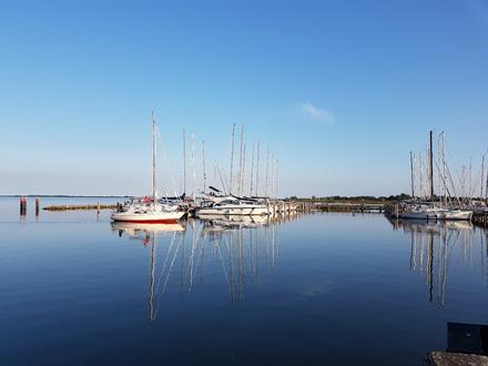Blick auf den Seglerhafen Kloster