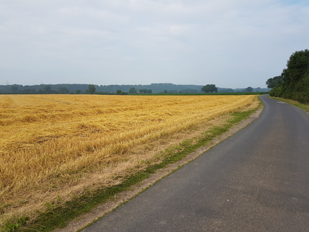 Auf dem niederrheinischen Jakobsweg mit Wandelsinn