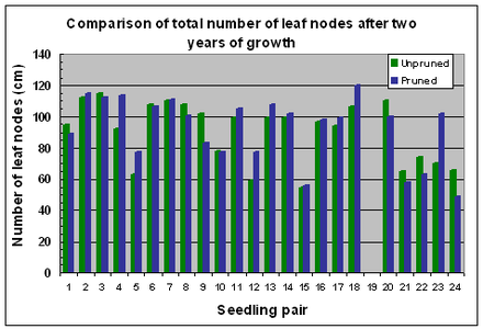 Fig.7 Variation in numbers of leaf nodes after 2 years of growth
