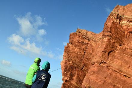 Kletteraktion im Lummenfelsen. Foto: Lilo Tadday