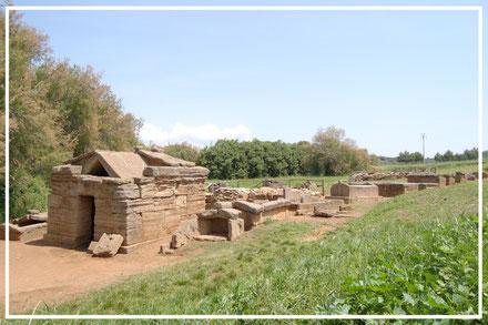 PARCO ARCHEOLOGICO DI BARATTI E POPULONIA