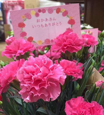 母の日 人気 プレゼント 花ひろ 配送有り まだまだ間に合う プリザーブド 花鉢 フラワーアレンジ