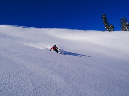 March-Pow, Freeriding, No tracks