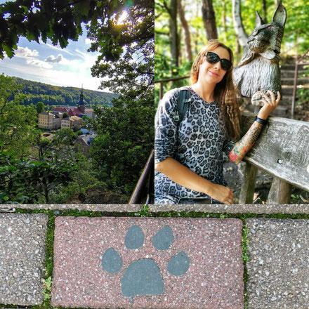 Bad Schandau, Hessen, Stadt, Themenweg,  Raubkatzen, Luchsweg, Wandern, Klettern, Luchs