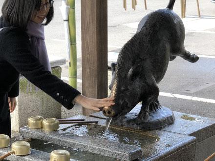 手水を出すのもイノシシ、狛イノシシや木彫りのイノシシ等、境内はイノシシづくしです。