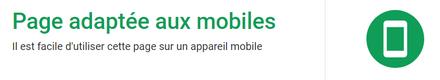 Votre site est-il bien adapté aux supports mobiles ?