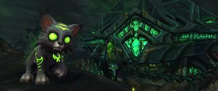 Voici le chaton Malice, la mascotte caritative 2016 pour World of Warcraft !