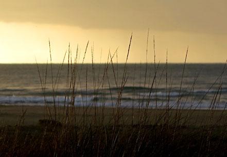 28. November 2016 - Abschied vom Meer