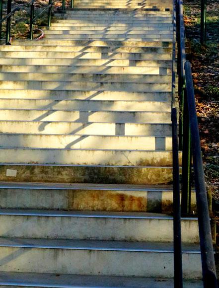 19. Dezember 2016 - Treppe zur Sonne