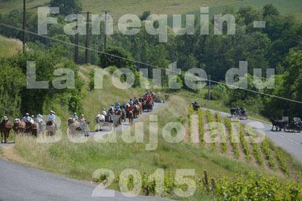 La Route du Beaujolais 2015 - 24 Mai 2015 - Après Midi