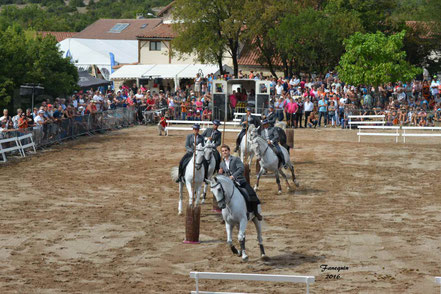 CARROUSEL de LUSITANIENS par 6 cavaliers & cavalières