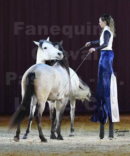 Lucie VAUTHIER - ces chevaux en liberté