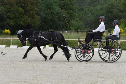 HUSTACHE Hugo - solo cheval MERENS