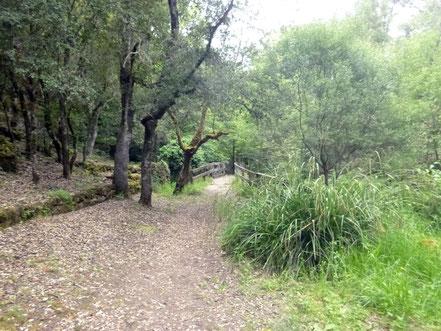Wanderweg bei Is Janas