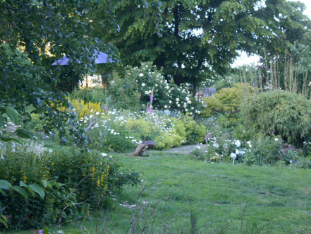 Nachbarins  Garten,ein kleines Paradies