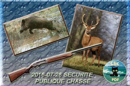 Arrêté portant sur la sécurité publique et l'usage des armes, y compris lors des actions de chasse et de destruction