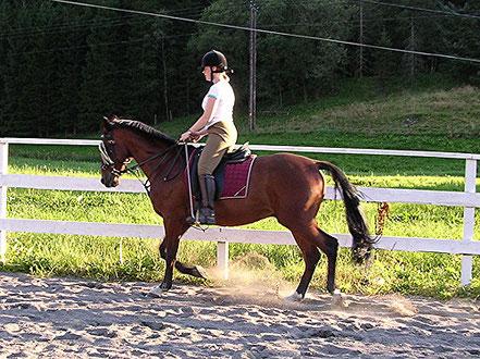 Rideundervisning