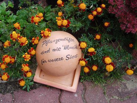 Güritz Garten Elke Ferner