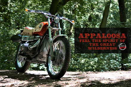 Appaloosa by Motor Circus