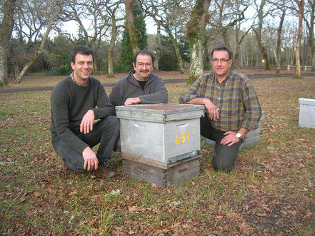 colmena, apicultor, francia