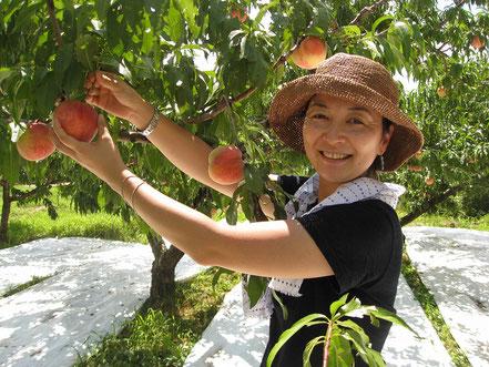 桃を笑顔で収穫している収穫体験の写真