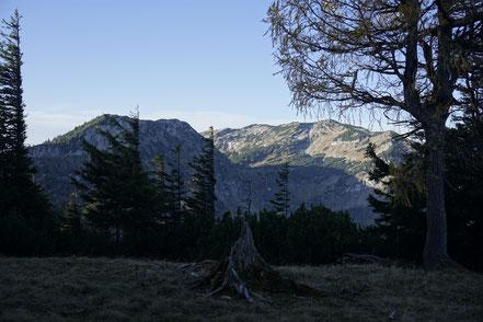 Berghundtal, berg hund tal, outdoor;testberichte;sam on tour;katzen;wandern;wandern mit hund;berghund;alpen;berge;erfahrungsberichte;berghundtal;herbststimmung