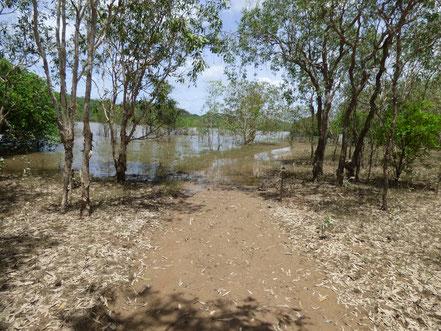 Der Wanderweg wird zum Wasserweg