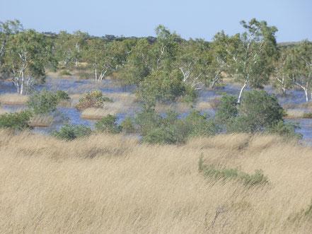 Große Flächen waren vom Wasser erfasst