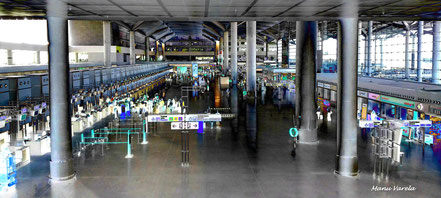 Terminal Pablo Picasso - Málaga/AGP