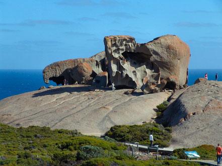 Illa Kangooro, Austràlia.