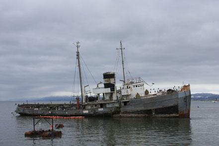 El remolcador 'Sant Christopher' va quedar encallat davant del litoral de Ushuaia a 1953, Argentina.