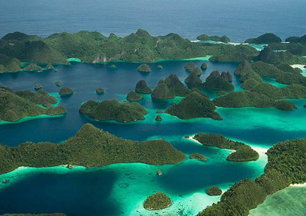 Cales i  Illes Raja Ampat, Papua Occidental, Indonèsia, F. Frank Lynaggerjerry.