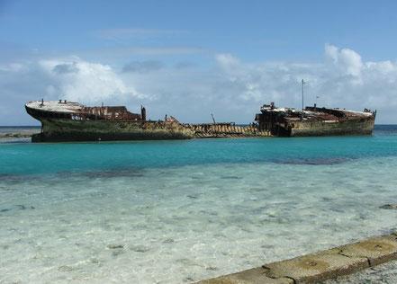 Protector Shipwreck estava constituït per gran ferro, comprat pel govern d'Austràlia del Sud en 1884.