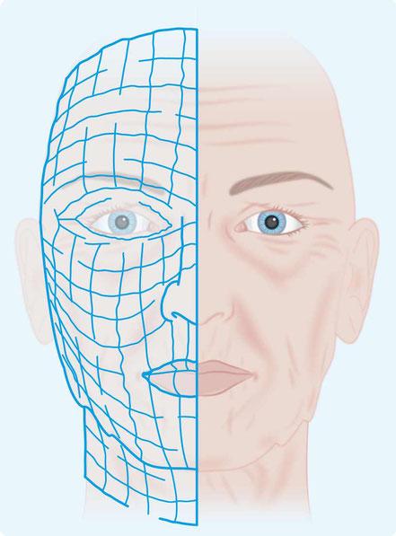 Alterungsfaktor Proteinschädigung