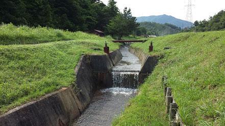 山からの湧き水、ミネラル豊富な水、清らかな水の写真