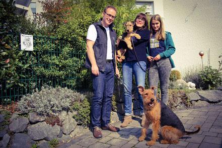 Beppo lebt nun bei einer Familie in Bergisch Gladbach und wird auch zunächst eine Welpengruppe besuchen. Nun hat die Airedale Terrier Hündin, Bonny vom Flammentanz, einen Kumpel.