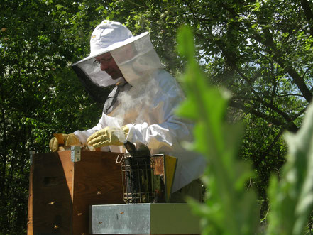 Visite de ruche Voirnot