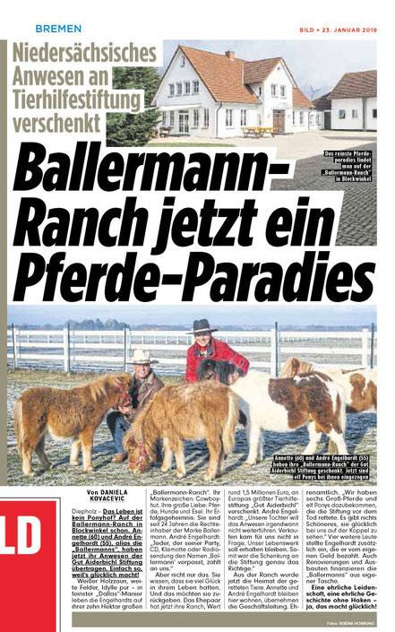 BILD im Ballermann - Pferdeparadies von GUT AIDERBICHl bei Annette u. Andre Engelhardt in blockwinkel (Niedersachsen)