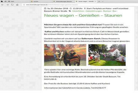 Website der Stadt Bassum (Niedersachsen)