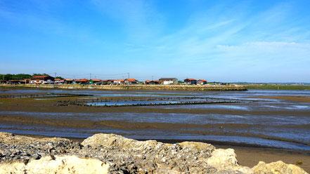 Port de Gujan-Mestras, Bassin d'Arcachon